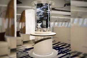 787-9 VIP BBJ Azure 10
