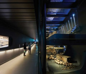 Mary Rose Museum 2